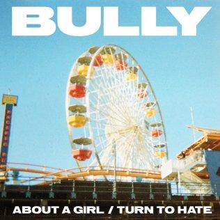 Bully-1588349355